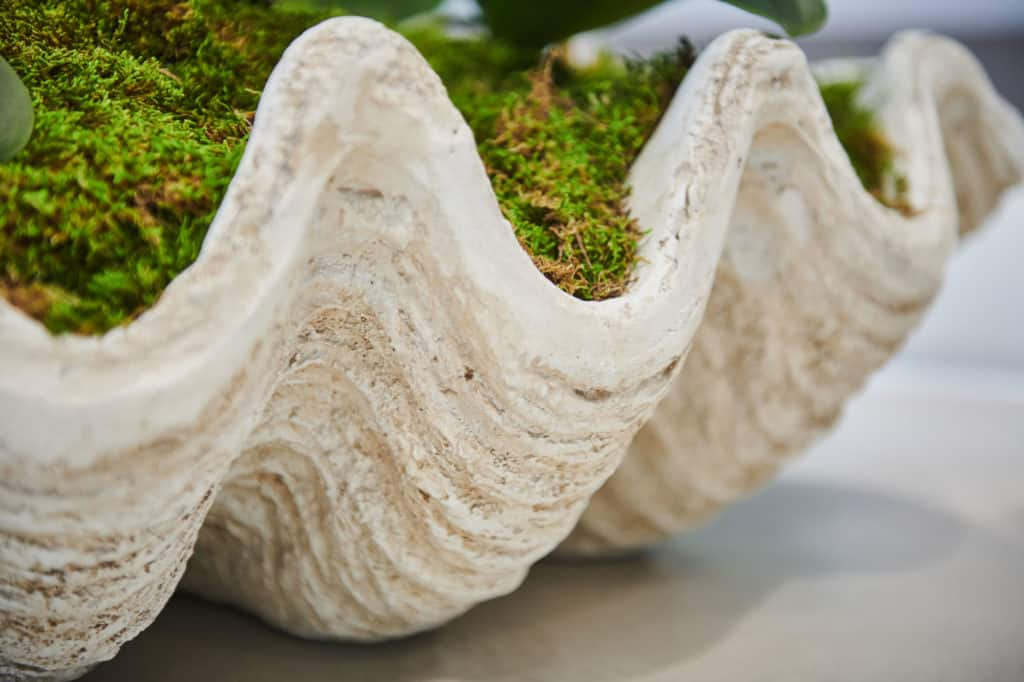 Conference Room Centerpiece Shell and Flower Pot